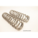 Big Lift Kit Tender Springs Polaris RZR XP 1000 - Front